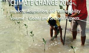 quinto informe cambio climático